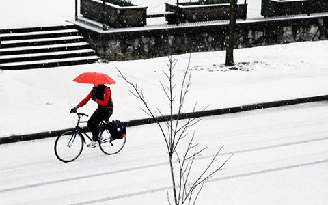 Владимир Кумов о том, как ездить на велосипеде весь год и попасть в Минтранс