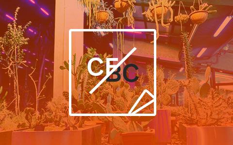 «Сплин», вечеринка «Армы», 5 ярмарок, фетиш-календарь Pirelli и орхидеи