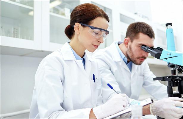 Подтверждено общее происхождение человека иморской губки