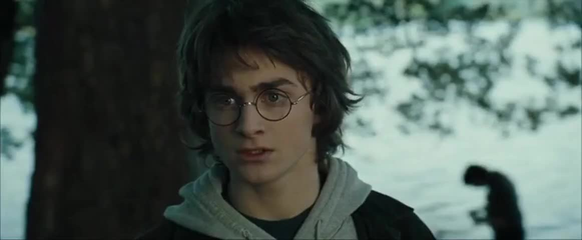 Harry Potter and the Goblet of Fire (2005) - Quotes - IMDb