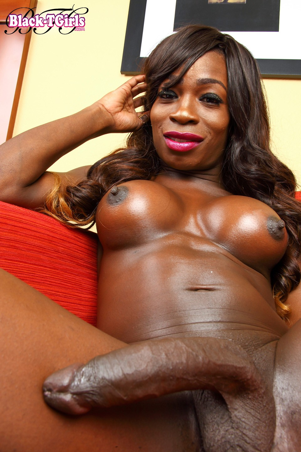 Solo big black cock shemale