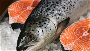 Раскрыта причина резкого подорожания красной рыбы