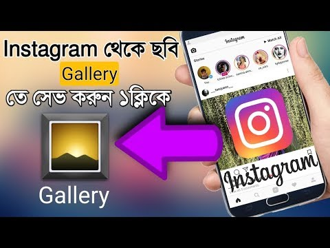 How to download Instagram Videos and Photos in