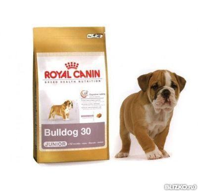Корм royal canin английский бульдог