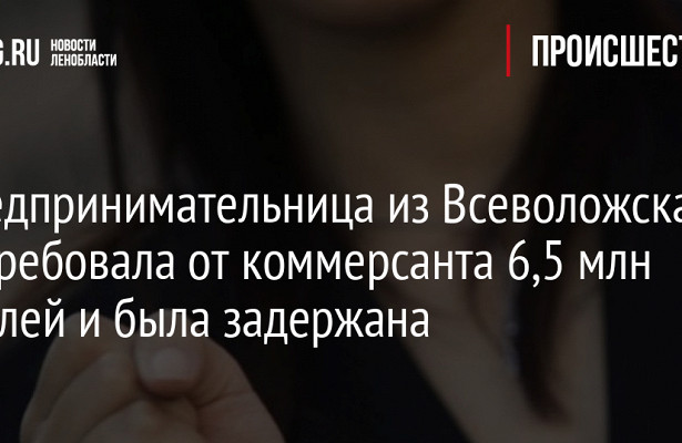 Предпринимательница изВсеволожска потребовала откоммерсанта 6,5млнрублей ибыла задержана