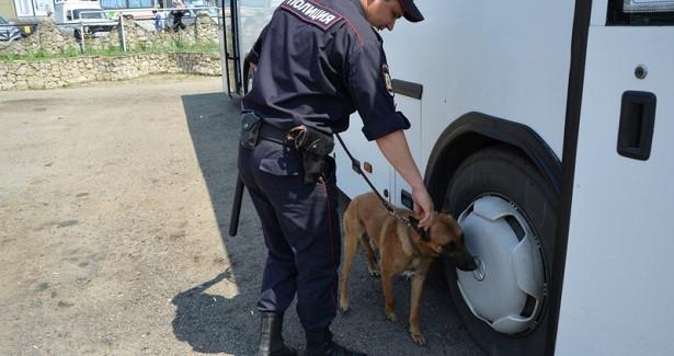 ВТульской области разыскивают трёх пропавших подростков