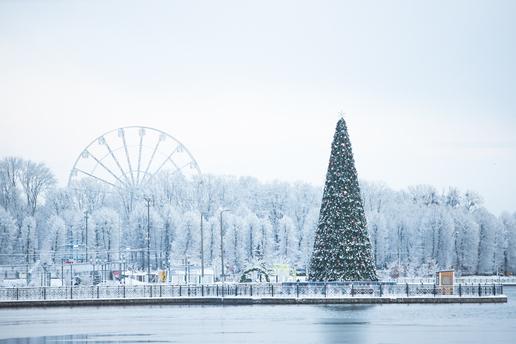 «Дары волхвов» и«Снегурочка»: какие десять книг почитать нановогодних праздниках