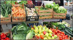 Кривые огурцы и мини-картофель: что такое «еда эконом-класса» в России