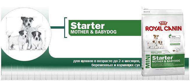 Дозировка корм royal canin mini junior