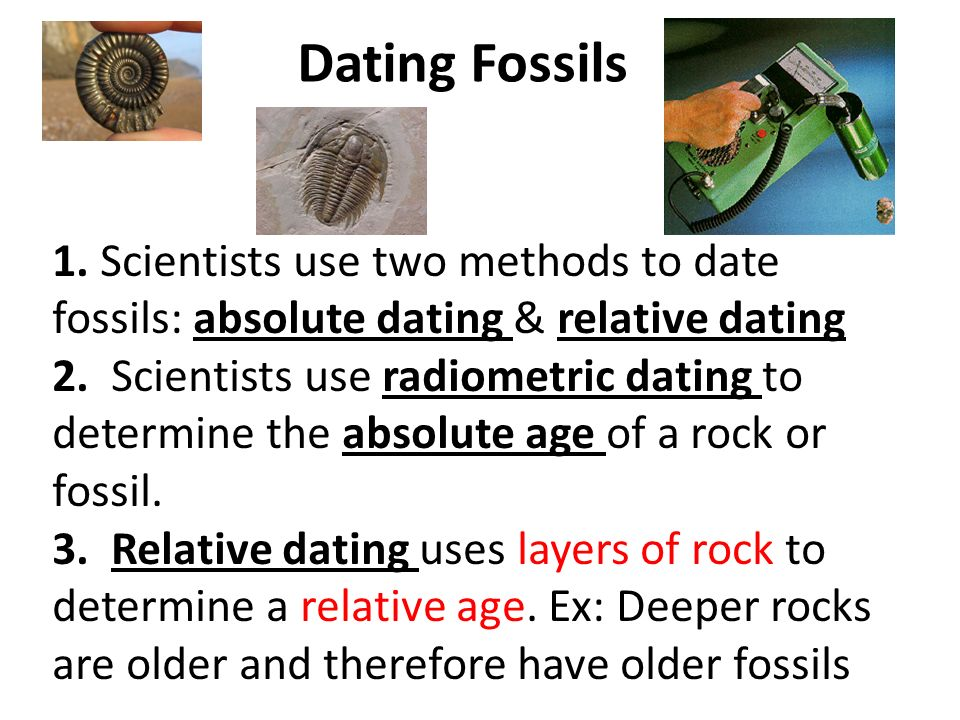 What are the two methods of dating fossils