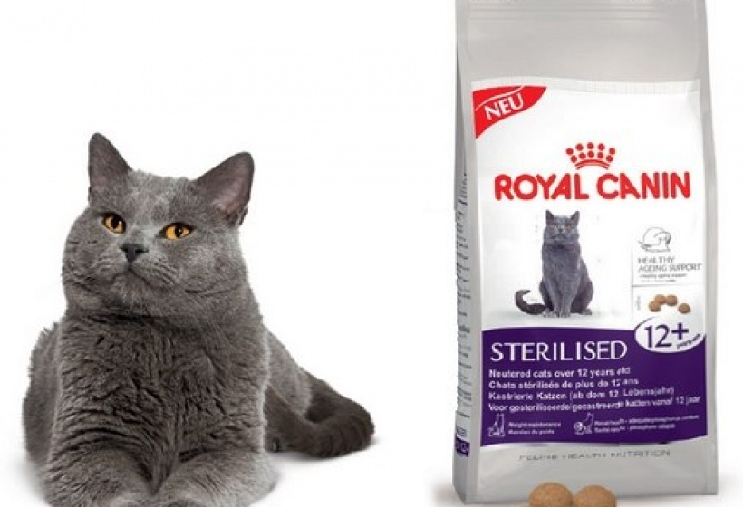 Корм royal canin ассортимент