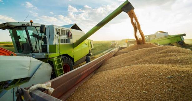 Парадокс: ЧтовРФрезко подорожает из-зарекордного урожая