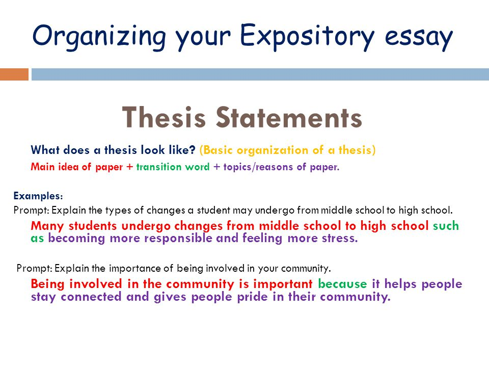 Write my expository essay examples middle school