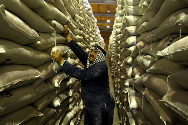 Страны начали запасаться продуктами наслучай второй волны коронавируса