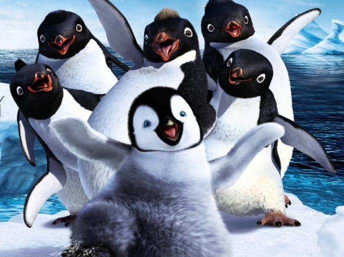 Verirrter Pinguin: Verschwommen - ZEIT ONLINE