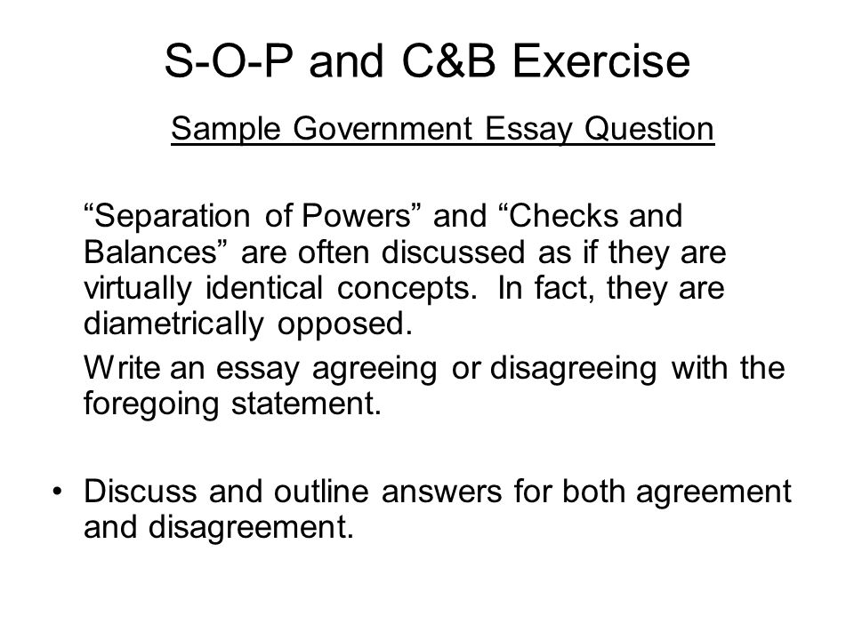 Government essay topics