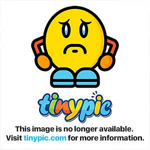 Phthalates in adult toys