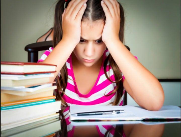 Download Ready Freddy! #3: Homework Hassles Ebook