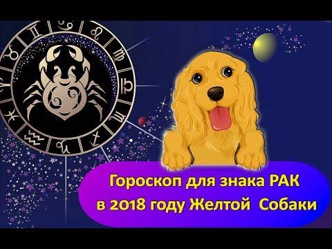 Гороскоп ракам женщи м   2018 год