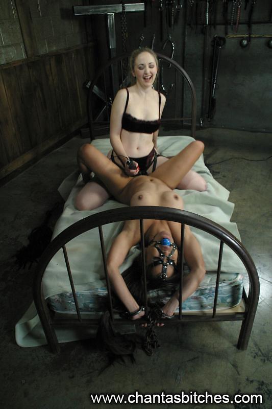 Porn anal milf wife free