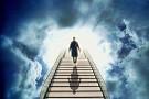 Околосмертные переживания человека— аналог танатоза уопоссума