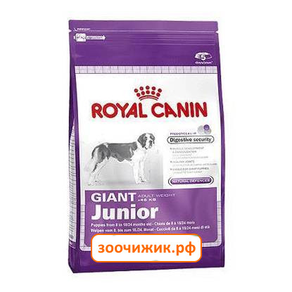 Корм royal canin giant 28