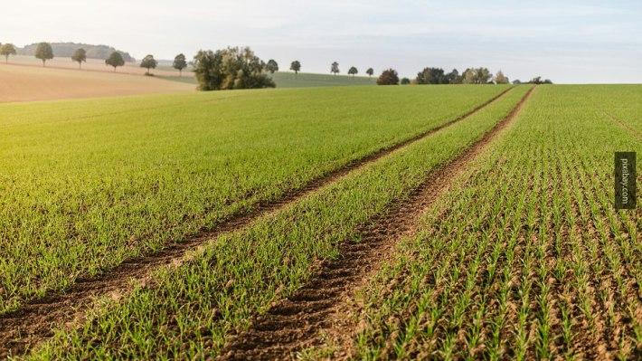 Землю в Александрополис для сельского хозяйства