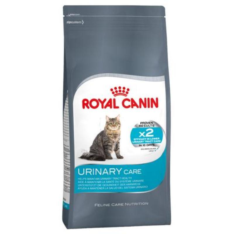 Go vs корм royal canin