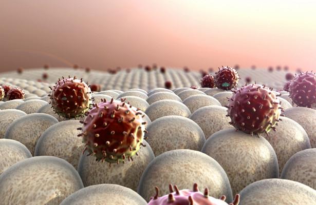 Хроники коронавируса: причину осложнений отCOVID-19нашли вантителах