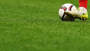 Развезут подомам: ВРФпозаботятся офанатах футбола