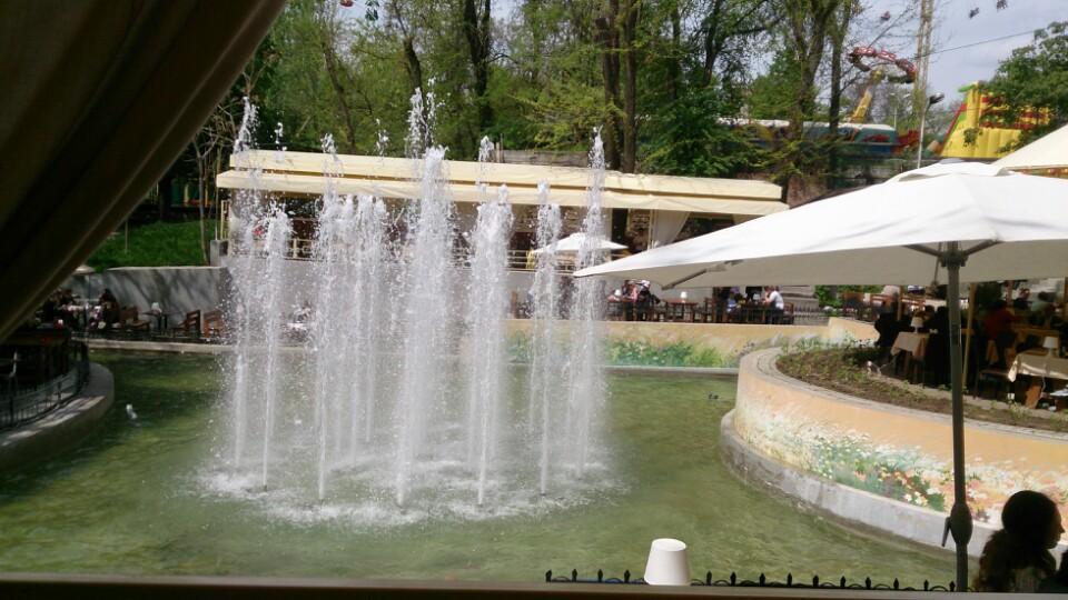 Ресторан Старый фонтан - фотография 5