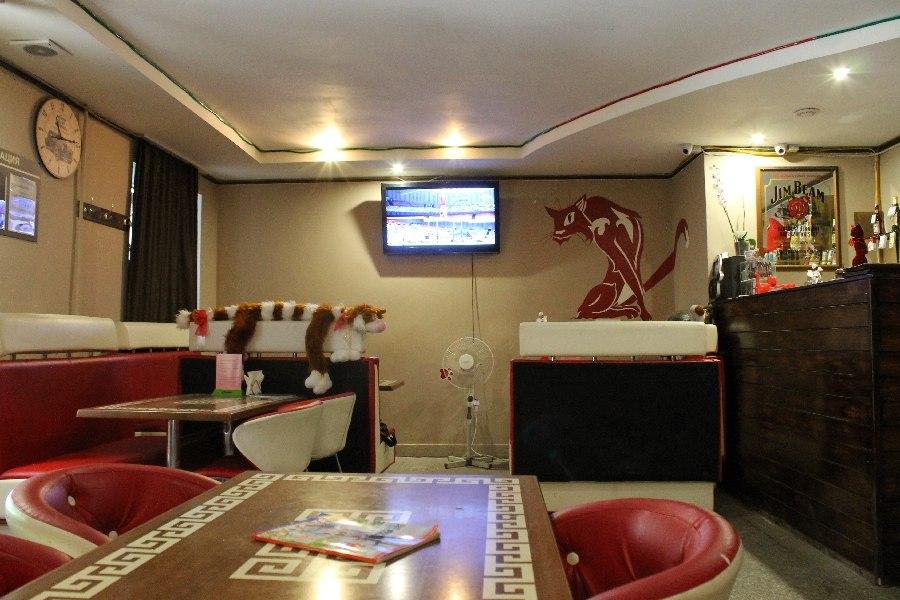 Ресторан Красный кот - фотография 4