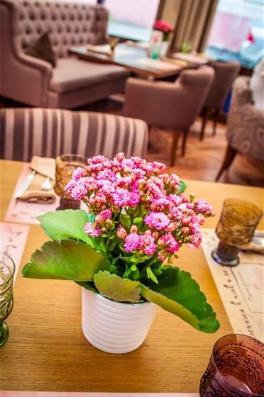 Ресторан Pilove Café - фотография 20 - Летняя веранда