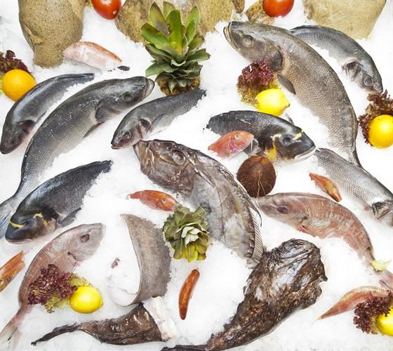 Ресторан Porto maltese - фотография 7 - Свежайшая рыба в ассортименте