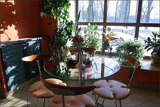 Ресторан Зелень - фотография 5