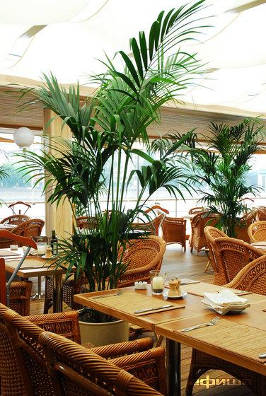 Ресторан Ласточка - фотография 14