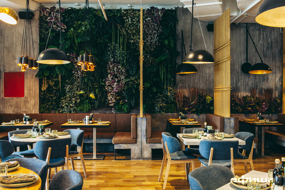 Ресторан The Mad Cook - фотография 16