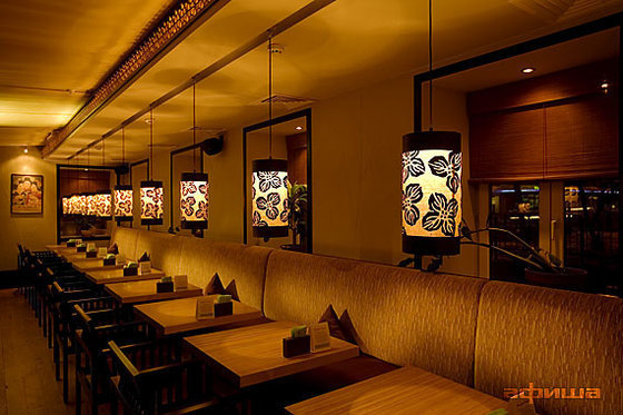 Ресторан Дайкон - фотография 5