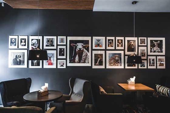 Ресторан Voilok - фотография 9
