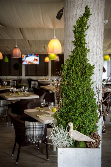 Ресторан Greenhoff - фотография 19