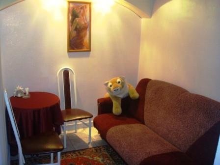 Ресторан Альбатрос - фотография 4 - VIP-кабинет. Небольшой, но уютный. Есть караоке.