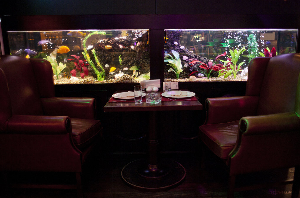 Ресторан Тель-Авив - фотография 20