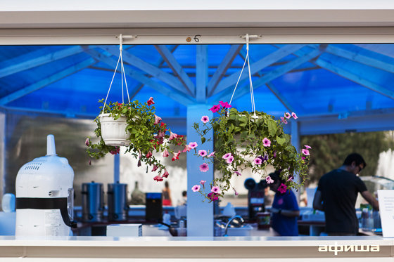Ресторан Bubble Berry - фотография 17
