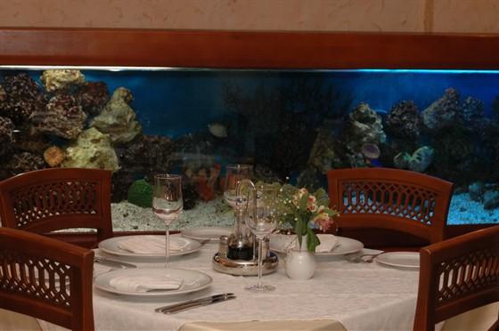 Ресторан Dolce vita - фотография 12