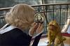 Темные начала: Золотой компас (The Golden Compass)