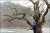 Весна, лето, осень, зима... и снова весна (Bom yeoreum gaeul gyeoul geurigo bom)