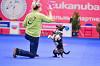 XXI Выставка собак всех пород «Россия-2014»