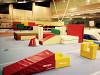 Европейский гимнастический центр «Локомотив»