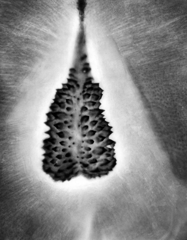 окуляр микроскопа фото