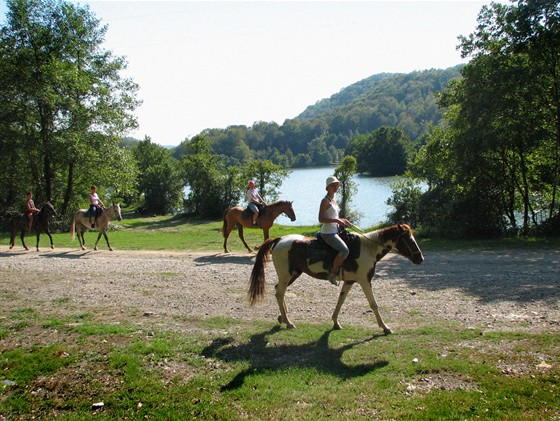 Фото конный клуб